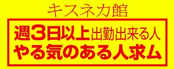松島新地求人【キスネカ館】