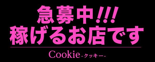 飛田新地求人【クッキー】